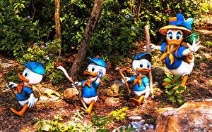 Обои США Парк Утка Флорида Дизайн Disney's Animal Kingdom park