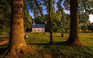 Фотография Штаты Парки Дома Дерева Траве Great Smoky Mountains National Park