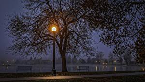 Картинка США Парк Озеро Осень Уличные фонари Ночь Дерева Скамья Denver Colorado Природа