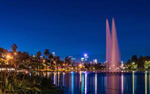 Картинка Штаты Парк Озеро Фонтаны Калифорнии Лос-Анджелес Пальма Ночь Лучи света Echo Park Lake Природа Города