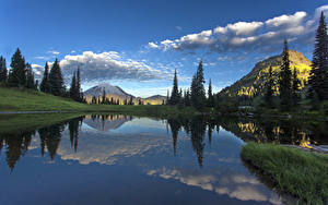 Фотографии США Парк Озеро Горы Небо Пейзаж Облако Ели Маунт-Рейнир парк Tipsoo Lake Природа