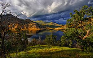 Картинки Америка Парк Озеро Пейзаж Калифорнии Холмов Деревья Трава Redwood National Park