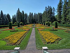 Обои для рабочего стола Штаты Парк HDR Дизайна Газон Кусты Ели Manito Gardens Spokane Природа