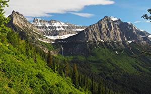 Обои Штаты Парки Гора Леса Glacier National Park