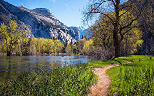 Картинка Америка Парки Гора Весна Озеро Йосемити Дерева Тропы