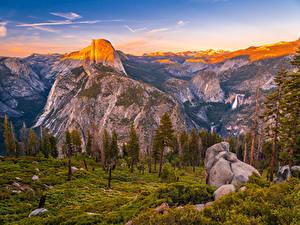 Фото Штаты Парки Гора Камни Пейзаж Йосемити Ели Природа
