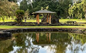Фото Штаты Парк Пруд Мосты Гавайи Lili'uokalani Park Kauhiula