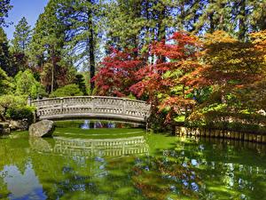 Фотография США Парки Пруд Мосты Камни Вашингтон HDRI Деревья Japanese Garden Spokane Природа