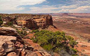 Картинка Америка Парк Камни Скала Каньон Canyonlands, Utah Природа