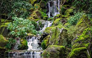 Картинки Штаты Парки Водопады Камни Мох Ручей Природа