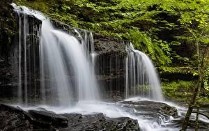 Фото Штаты Парки Водопады Скала Ricketts Glen State Park Природа
