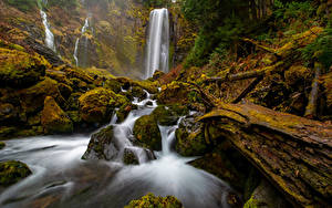 Фотография Штаты Парк Водопады Камень Вашингтон Утес Мха McClellan Falls Природа