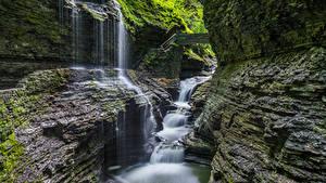Фотографии США Парки Водопады Скала Мхом Watkins Glen State Park Природа