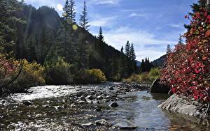 Обои США Реки Осень Леса Горы Камни Парки Grand Teton National Park, Wyoming Природа