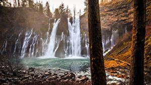 Картинки Штаты Водопады Осенние Калифорния Скалы Ствол дерева McArthur-Burney Falls Memorial State Park Природа