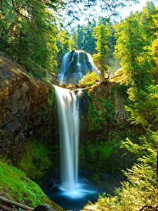 Фото Штаты Водопады Вашингтон Утес Мха Skamania Природа