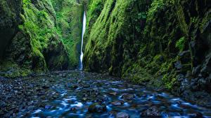 Обои США Водопады Камень Мох Скала Ручей Oregon Природа