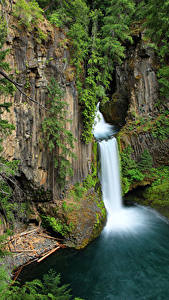 Картинка Штаты Водопады Ствол дерева Скала Toketee Falls Oregon Природа