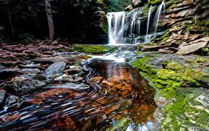 Фотография США Водопады Скалы Мох West Virginia Природа