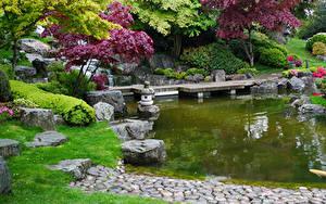 Фотография Великобритания Парки Пруд Камни Лондон Деревьев Кустов Holland Park Природа
