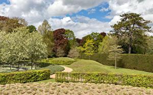 Картинка Великобритания Парки Дизайн Кустов Ascott House gardens Природа