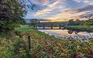 Фотографии Великобритания Реки Мост Деревья Трава Tyrone, Northern Ireland Природа