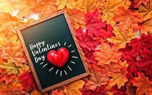 Фотография День всех влюблённых Осень Сердце Клёновый Листва Английская Текст