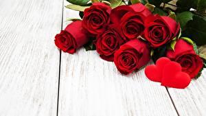 Обои для рабочего стола День всех влюблённых Красные Доски Шаблон поздравительной открытки Сердце цветок