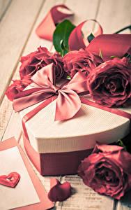 Картинка День святого Валентина Розы Подарки Бантик Сердечко Цветы