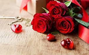 Фотографии День всех влюблённых Роза Сердечко Шаблон поздравительной открытки