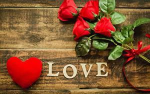 Фотография День всех влюблённых Роза Любовь Сердечко Слова Английская цветок