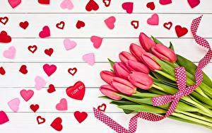 Картинки День всех влюблённых Тюльпан Букет Сердечко цветок