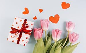 Картинка День всех влюблённых Тюльпаны Подарки Сердце Цветы
