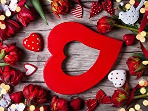 Фотография День всех влюблённых Тюльпаны Сердечко цветок