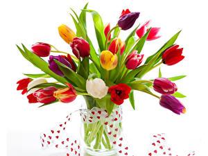Фотографии День святого Валентина Тюльпаны Белый фон Ваза Сердечко Лента Цветы
