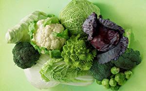 Картинка Овощи Капуста Цветной фон