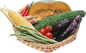 Фотография Овощи Баклажан Кукуруза Тыква Помидоры Белый фон Продукты питания