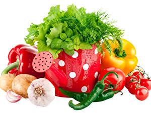 Обои Овощи Чеснок Лук репчатый Перец Томаты Острый перец чили Укроп Белом фоне Еда