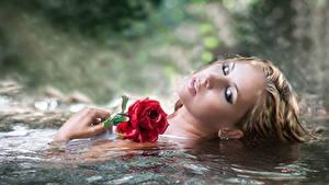 Фотография Воде Роза Косметика на лице молодая женщина Цветы