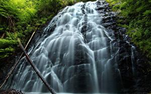 Фотография Водопады Скала Ветки Природа