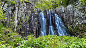Картинки Водопады Утес Трава Мох Природа