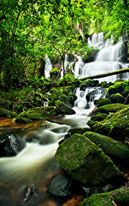 Фото Водопады Камень Мха Природа
