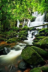 Фото Водопады Камень Мох