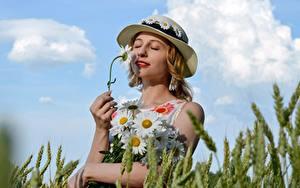 Фотография Пшеница Ромашки Букеты Лето Колос Шляпе Блондинки Руки Victoria Borodinova Девушки