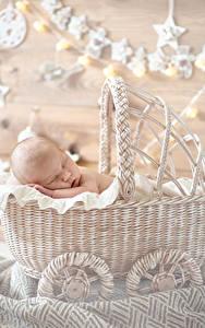 Картинки Корзина Грудной ребёнок Спящий