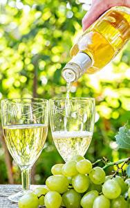 Обои для рабочего стола Вино Виноград Бутылки Бокал Пища