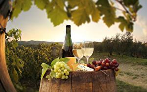 Картинка Вино Виноград Сыры Бокалы Бутылки Еда