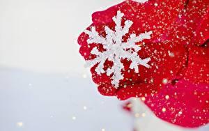 Обои Зимние Вблизи Снежинка Рука Перчатках Красная