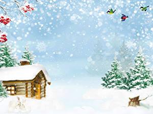 Фото Зимние Дома Птицы Снега Ель Снежинки Природа