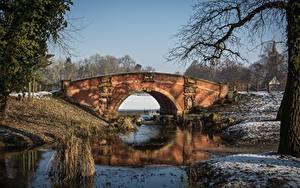 Обои для рабочего стола Зима Парк Мосты Германия Dessau-Wörlitz Города